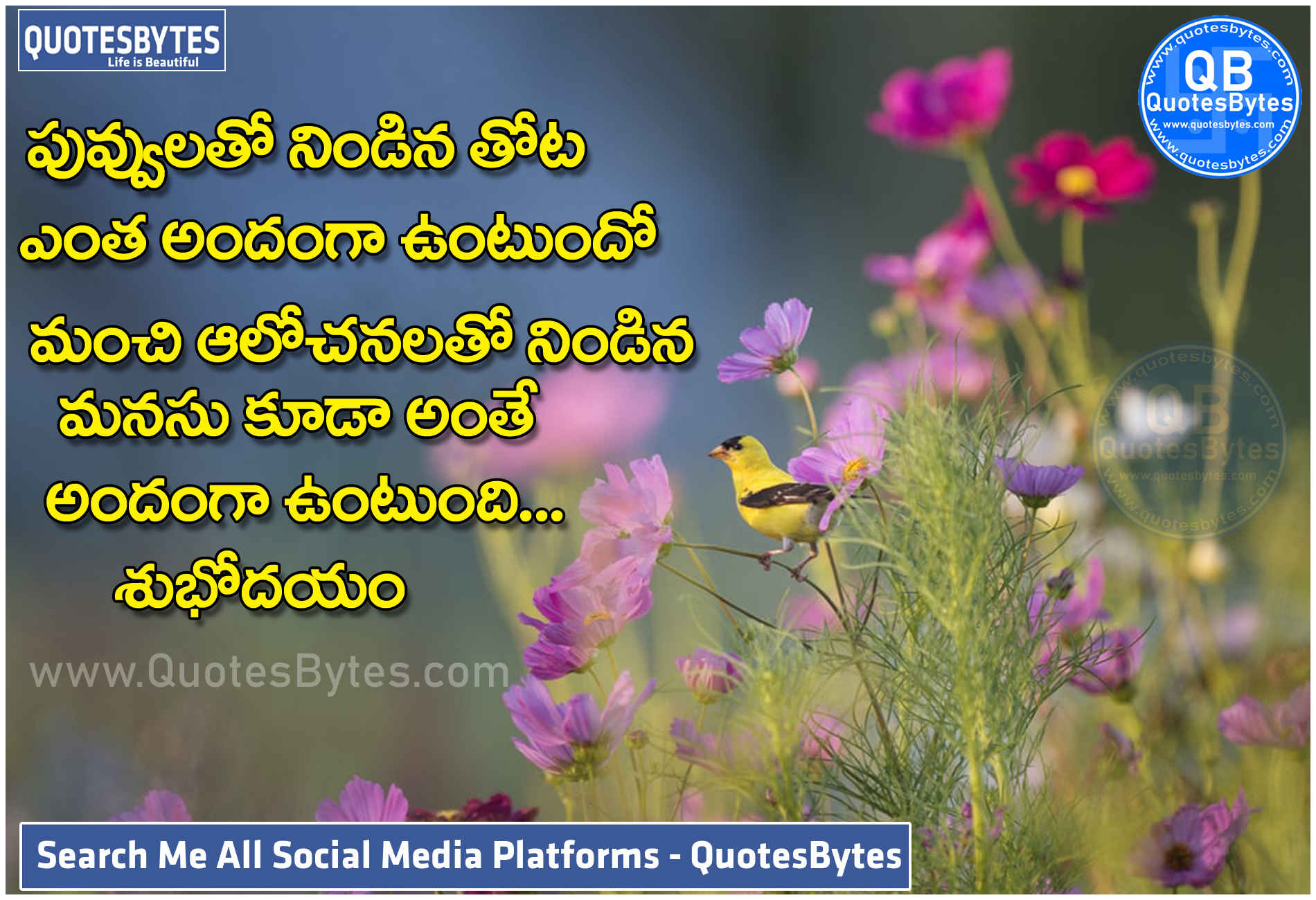 Telugu Good Morning Inspirational Quotes-Subhodayam Telugu Messages-Telugu Good Morning motivational quotes Good Morning Quotes in Telugu BEST GOOD MORNING QUOTES IN TELUGU – POPULAR TELUGU QUOTES Here are good morning quotes in Telugu text, Telugu good morning kavithalu, good morning quotes to share with friends,Best Telugu Good Morning whatsappdp, good morning quotes in Telugu for lovers, good morning in the Telugu language, best good morning whatsappdp,Inspirational Good Morning Quotes in Telugu, download good morning quotes Telugu. good morning quotes in telugu, good morning quotes in Telugu, Telugu good morning images, and also good morning images in Telugu,status quotes in telugu greetings and wishes,status Quotes,Telugu good morning quotes, good morning wishes in Telugu, good morning messages in Telugu ,Telugu good morning SMS and status ,good morning quotes, wishes in telugu,Best Telugu Quotes and Good Morning Quotes,TELUGU QUOTES GOOD MORNING QUOTES, morning wishes, great morning wishes.good morning quotes,inspirational good morning quotes in telugu, wishes in telugu, Best good morning pics, quotes,Telugu Good Morning Quotes for Facebook whatsappdp,status,Facebook good Morning Quotes with Images, images and sayings, NEW HD wallpapers best images, Good morning Telugu NEW cute and awesome images and wallpapers in HD Good morning Telugu, Telugu WhatsApp, Best And Top Good Morning In Telugu, Images, Quotes, Messages, Wishes. If you Are searching for good morning quotes in Telugu, Telugu good morning images, and also good morning images in Telugu, Telugu good morning quotes, good morning wishes in Telugu, good morning messages in Telugu and Telugu good morning sms and status,Good Morning Quotes in Telugu,Telugu Good Morning Quotes for Whatsapp Status, Telugu Good Morning Messages for whatsappdp,status,Telugu Good Morning Quotes for WhatsappStatus,Top Good Morning Quotes in Telugu,TELUGU GOOD MORNING QUOTES FOR WHATSAPP STATUS,Telugu Good Morning Quotes for Whats