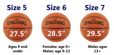 ukuran bola basket, berat bola basket,