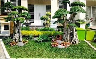 จัดสวนหน้าบ้านพื้นที่แคบ
