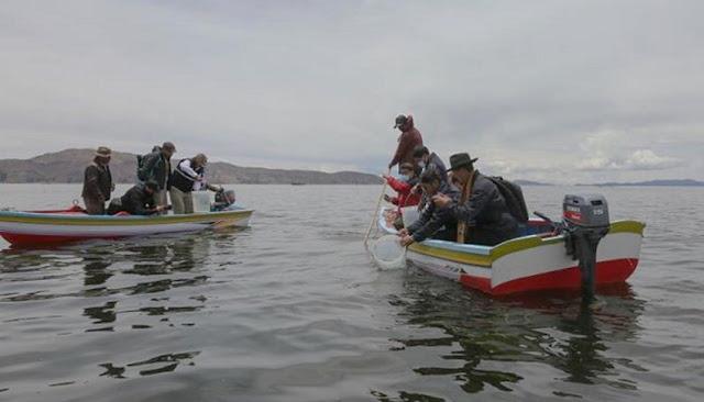 Perú y Bolivia se unen para recuperar la capacidad pesquera del Lago Titicaca