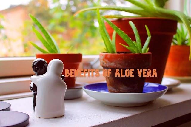 Benefits of Aloe Vera: Aloe Vera juice, gel for Face and Skin
