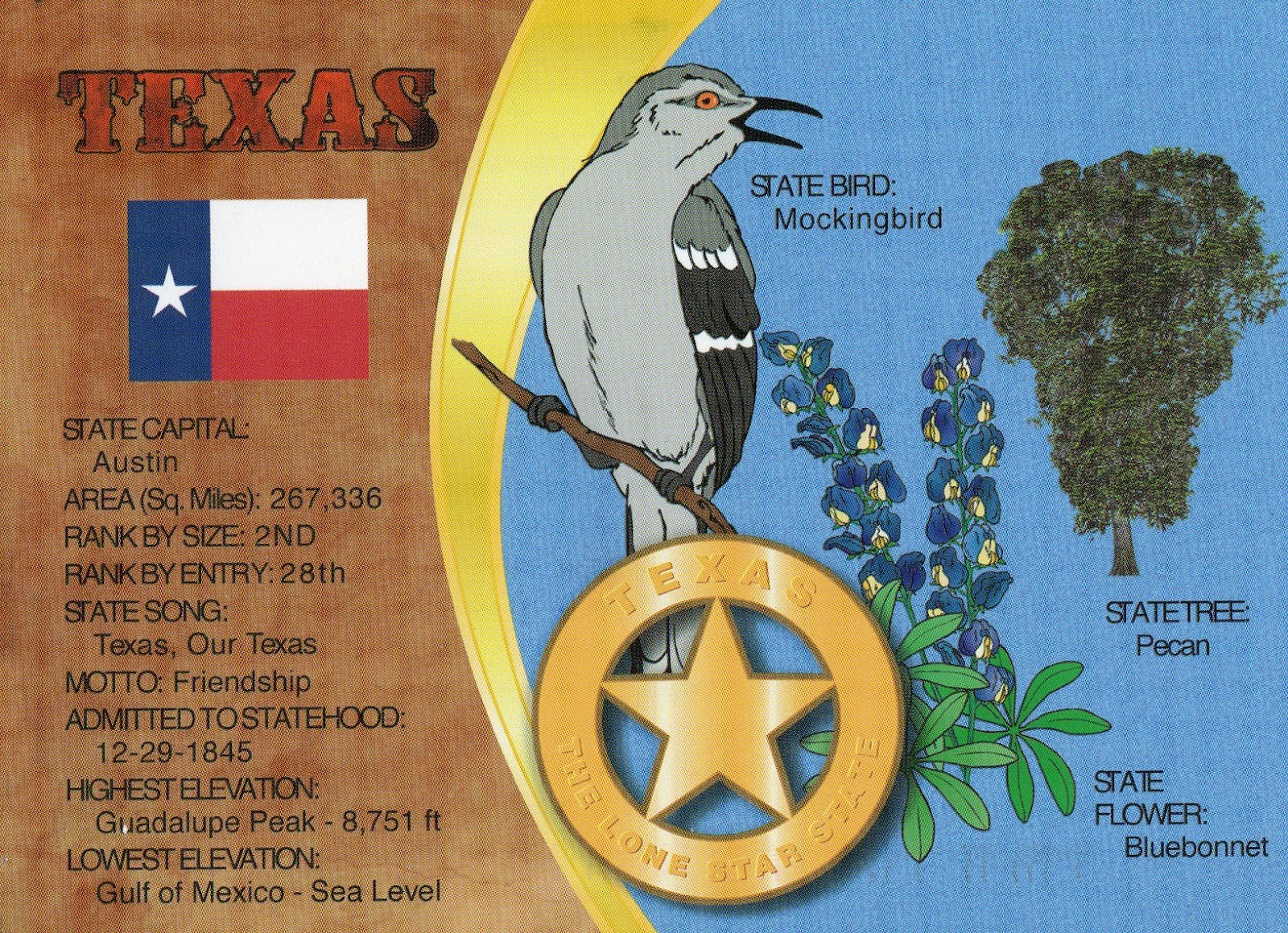 The World In Our Mailbox Texas State Fact Card