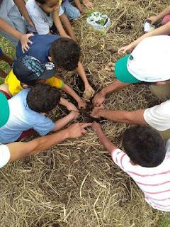 Dia da Árvore: projeto Agroflorestar realiza vivências em agrofloresta  e implanta horta agroflorestal com alunos da rede pública