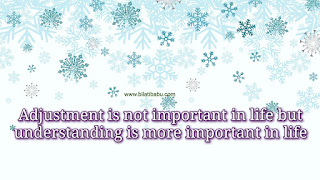 Adjustment is not important in life but understanding is more important in life