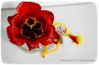 zagadki-pro-vesennie-cvety-dlya-detej-i-vzroslyh-magiya-biologii-тюльпан