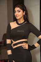 Pranitha Subhash in a skin tight backless brown gown at 64th Jio Filmfare Awards South ~  Exclusive 170.JPG