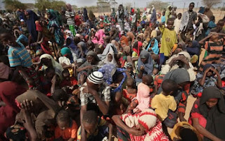 CSO: call FG over IDPs' protest on inadquate food supply in Borno camp