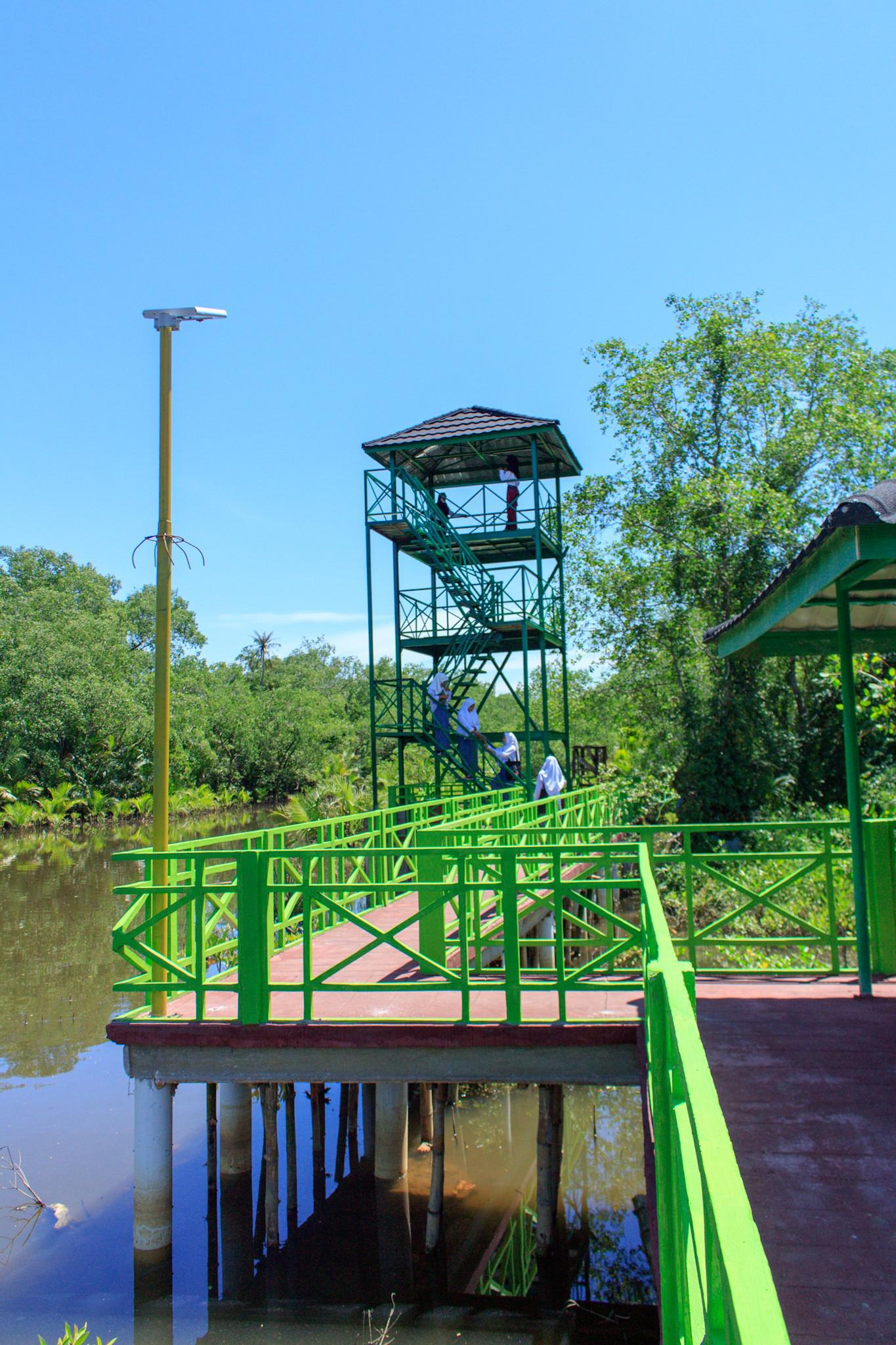 Wisata Edukasi Apar Pariaman Mangrove Park Banyak Yang Sudah Tak Sabar Untuk Datang Kesini Piaman Explore