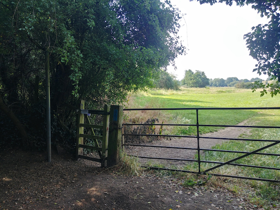 The gate to Standon footpath 14, mentioned in point 3 below  Image by Hertfordshire Walker released via Creative Commons BY-NC-SA 4.0