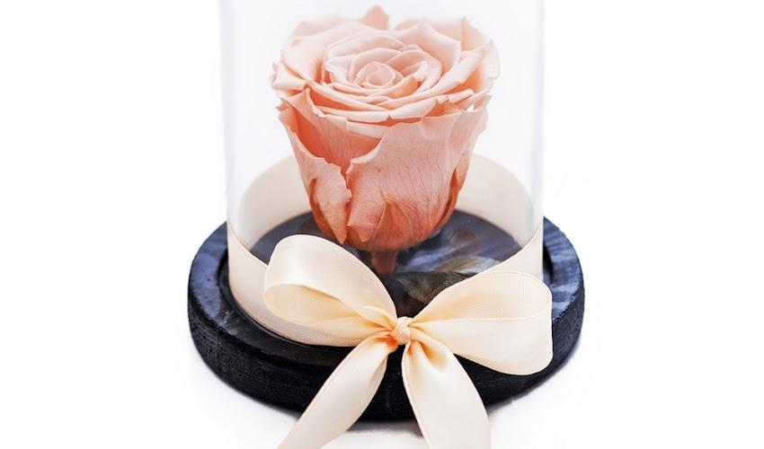 De ce sa oferi cadou trandafiri criogentati !