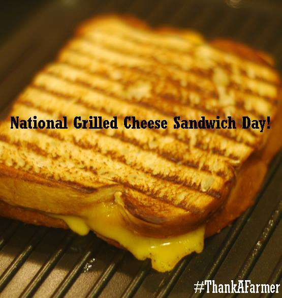 National Grilled Cheese Sandwich Day Wishes Pics
