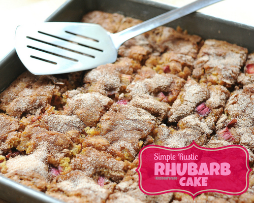 Rhubarb Cake ♥ KitchenParade.com, simple and rustic, less sweet to really taste rhubarb's wonderful 'sour'.