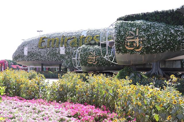 #TheLifesWayCaptures - Miracle Garden #Dubai #UAE - #PhotoReviews