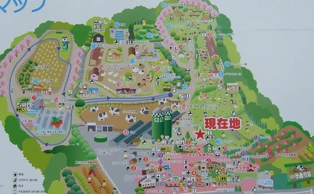 成田ゆめ牧場のマップ