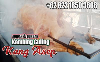 Kambing Guling di Ciwidey Bandung,kambing guling di ciwidey,kambing guling di bandung,kambing guling,