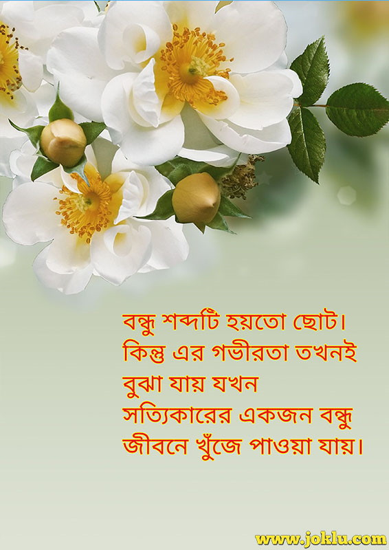 Friend is a small word friendship message in Bengali