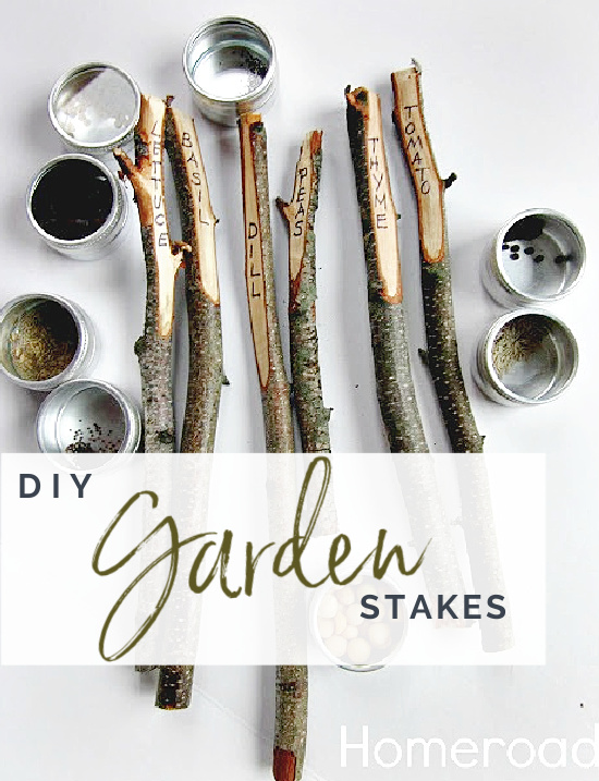 Garden stakes and seeds with Pinterest overlay