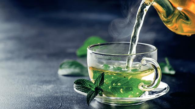 teh-hijau-untuk-diet