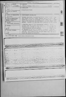 Carpio Grano Sighting 8-24-1966 (Abstract Report Cover)