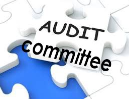 board-resolution-for-formation-of-audit-committee