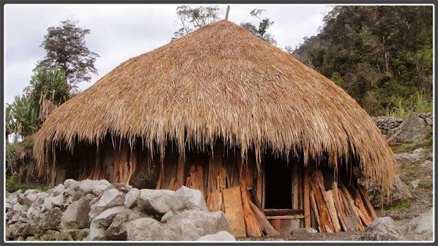 Gambar Model rumah adat Papua