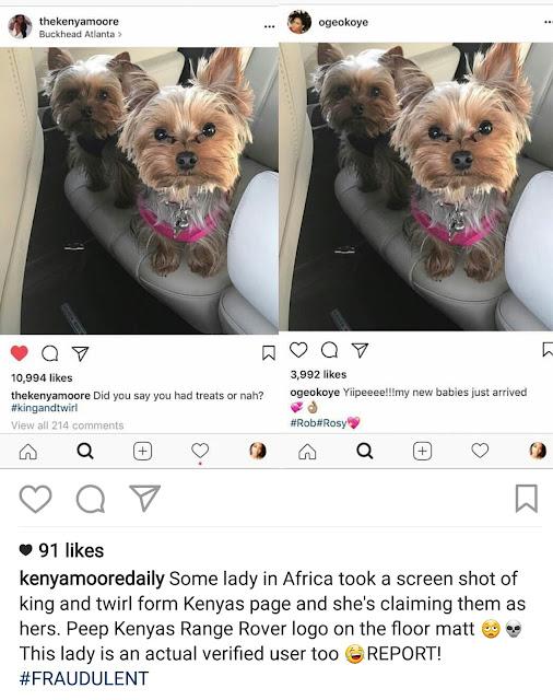 image result for Oge Okoye dog photo