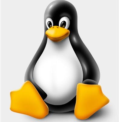 45 Perintah Dasar pada Linux