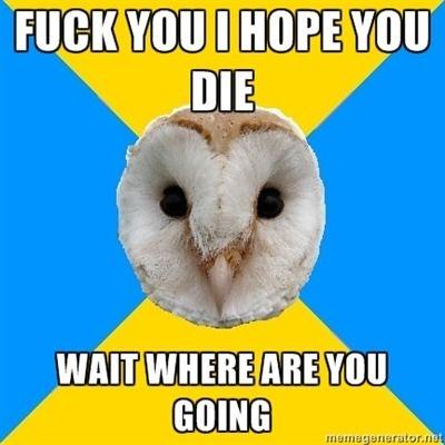 bipolar owl mood shift