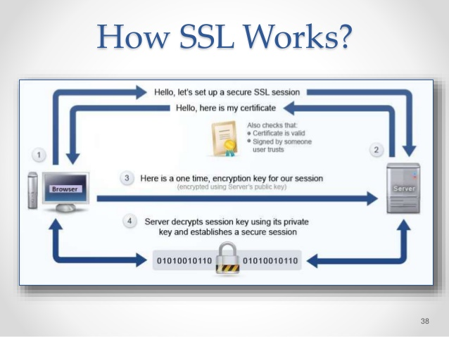 Learn Computer Science with Alam Zeb: How SSL works?