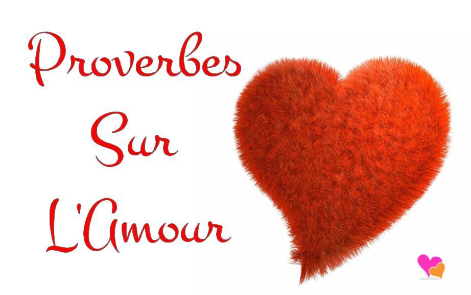 Les Plus Beaux Proverbes Du Monde Sur L Amour Poesie D Amour