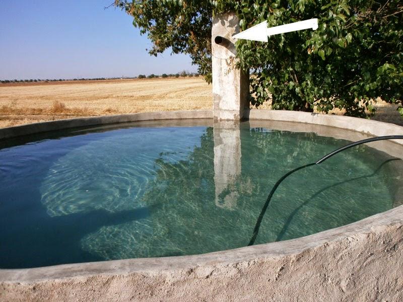 La alberca principio del sistema de riego y piscina natural for Albercas naturales