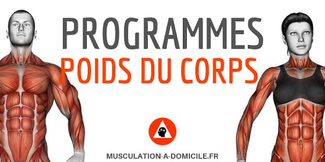 musculation-a_domicile.fr_programme-musculation-maison-débutant-haltere