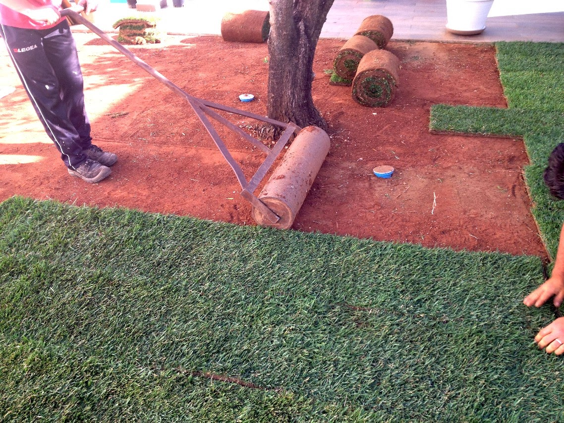 Vendita Prato A Rotoli Pistoia ecco come si realizza un prato con l'erba a rotoli - il tuo