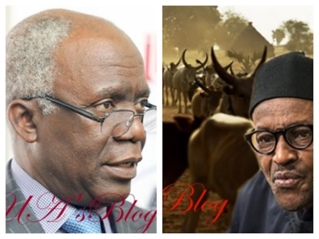 Falana to fed govt: 'replace RUGA with ranching'