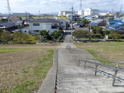 高槻市 三島江のコスモスロード 淀川河川敷公園からの眺め