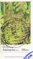 Ferns (Paku miding/Stenochlaena palustris)