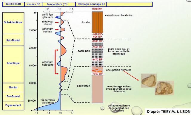 schéma de coupe des carottages à Fontainebleau et ses enseignements sur le climat