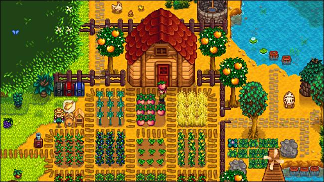 """مزرعة شخصية في """"وادي ستاردو""""."""