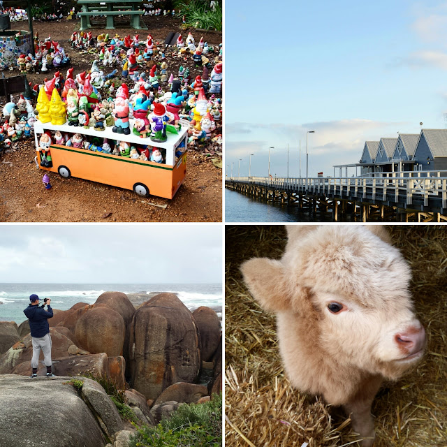 Gnomesville, Busselton Jetty, Pentland Animal Park, elephant rocks, travel, adventure