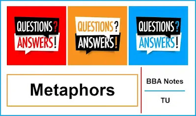 Metaphors │ Important Exam Questions and Answers