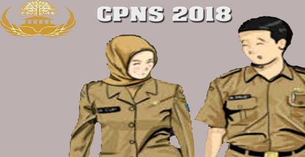 Pengumuman CPNS 2018