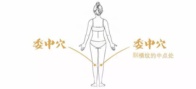 如何理解:頭項尋列缺,肚腹三里留,腰背委中求,顏面合谷收!(好氣色)