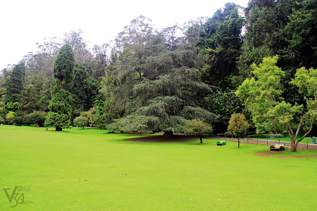 Ooty Botanical Garden - Lower gardens