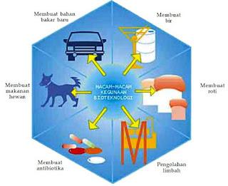 Pengertian dan Manfaat Bioteknologi serta Contoh Produk Bioteknologi Modern dan Konvensional