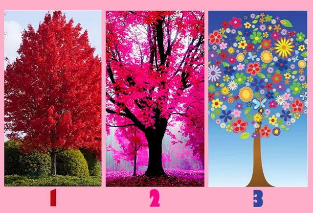 Дерево, которое вас больше привлекает, покажет уровень вашей искренности