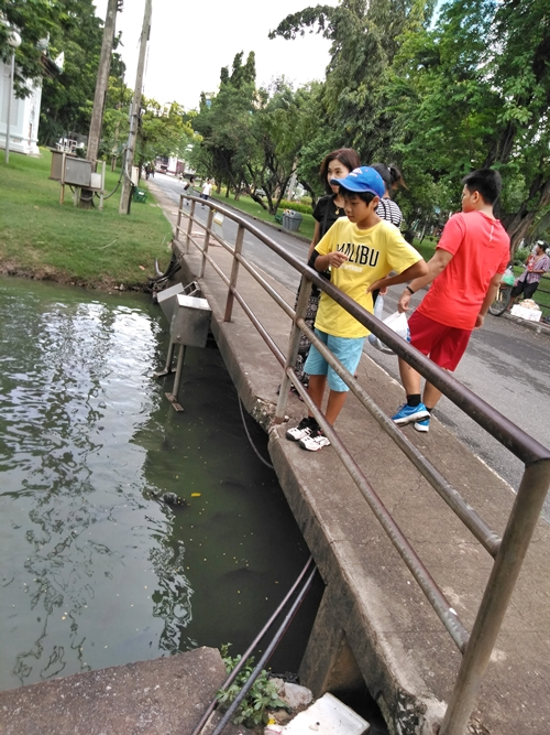 Lumpini Park JUL,2018