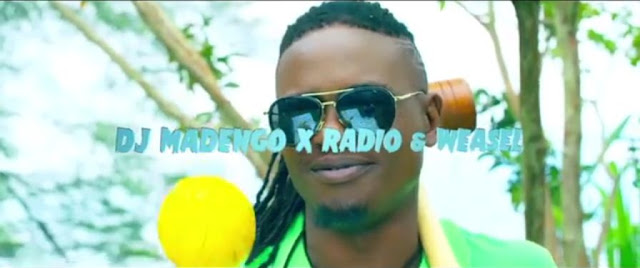 Radio & Weasel Ft Dj Madengo - There She Go Video