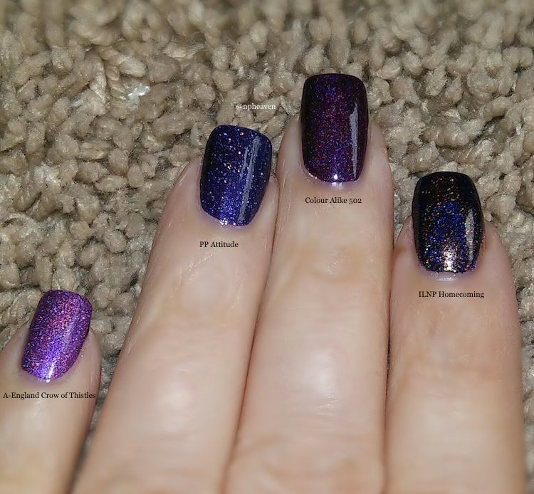 picture polish attitude comparison