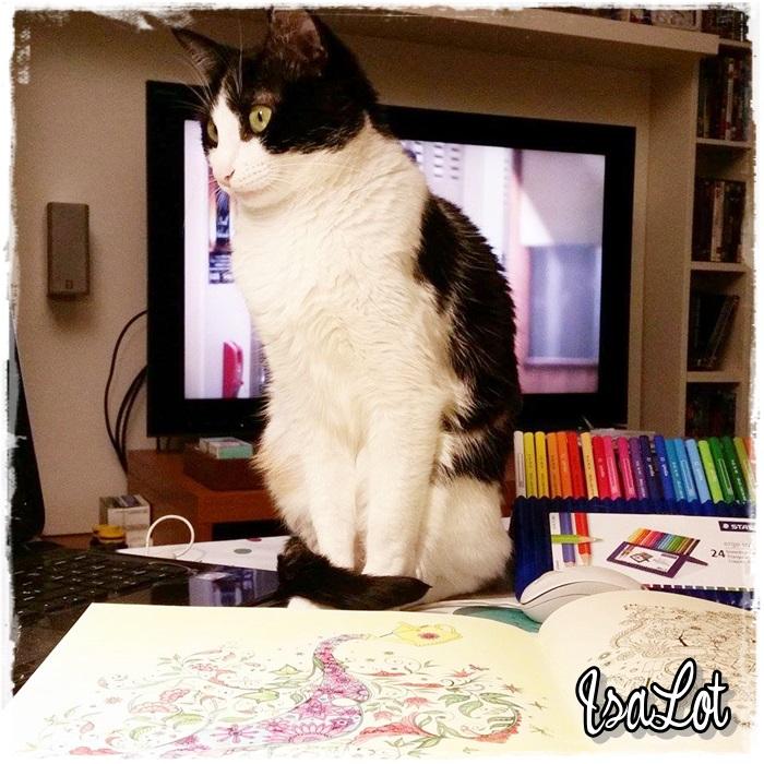 IsaLot Scrapbooking: Los beneficios que encuentro al colorear libros ...