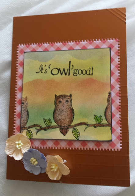 "It's Owl Good - owl on branch 7"" x 5"" hand coloured card"
